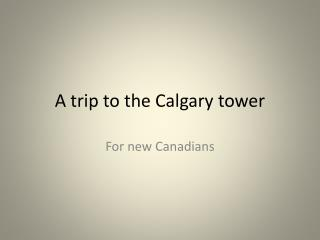 A trip to the Calgary tower