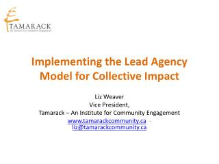 Implementing the Lead Agency Model for Collective Impact