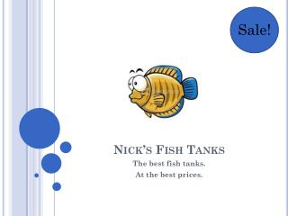 Nick's Fish Tanks