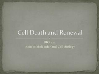 Cell Death and Renewal