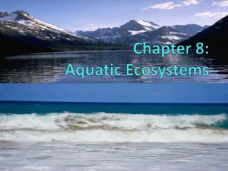 Chapter  8:  Aquatic Ecosystems