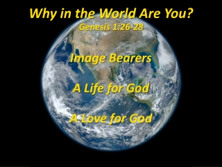 Why in the World A re Y ou? Genesis 1:26-28