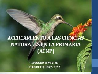 ACERCAMIENTO A LAS CIENCIAS NATURALES EN LA PRIMARIA (ACNP)