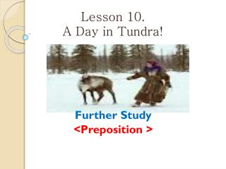 Lesson 10.  A Day in Tundra!