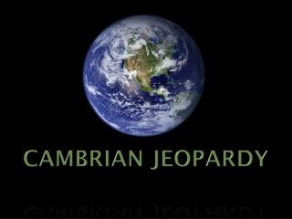CAMBRIAN JEOPARDY