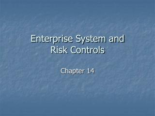 Enterprise System and Risk Controls