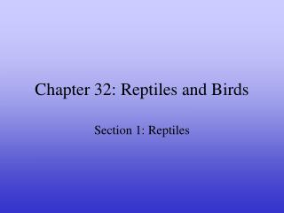 Chapter 32: Reptiles and Birds