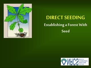 DIRECT SEEDING Establishing a Forest With Seed