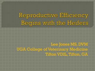 Reproductive Efficiency Begins with the Heifers