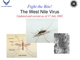 Fight the Bite! The West Nile Virus Updated and current as of 17 July 2003