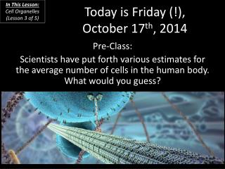 Today is Friday (!), October 17 th , 2014