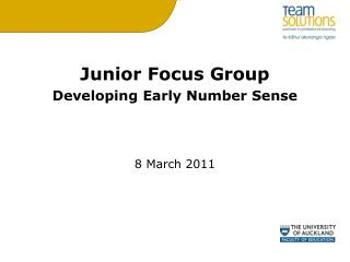 Junior Focus Group Developing Early Number Sense 8 March 2011
