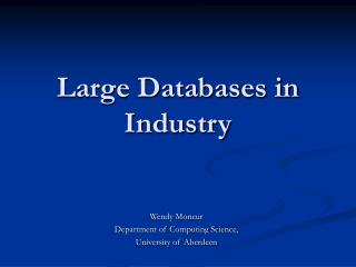Large Databases in Industry