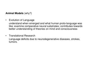 Animal Models  (why?) Evolution of Language