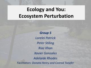 Ecology and You: Ecosystem Perturbation