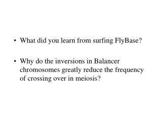 What did you learn from surfing FlyBase?