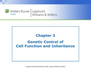 Chapter 3 Genetic Control of  Cell Function and Inheritance