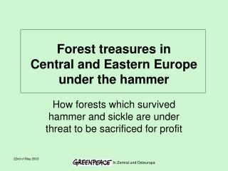 Forest treasures in  Central and Eastern Europe under the hammer