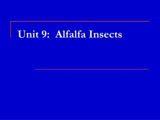 Unit 9:  Alfalfa Insects