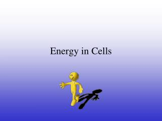 Energy in Cells