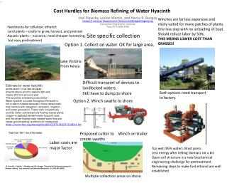 Cost Hurdles for Biomass Refining of Water Hyacinth