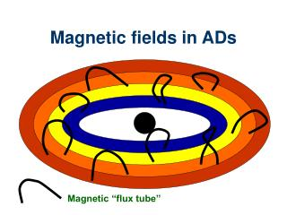 Magnetic fields in ADs