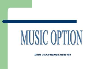 MUSIC OPTION