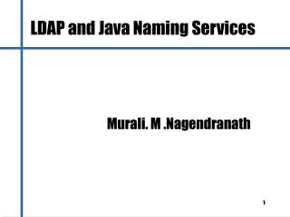 LDAP and Java Naming Services