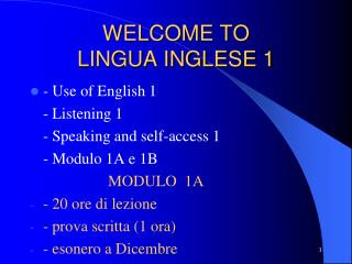 WELCOME TO  LINGUA INGLESE 1