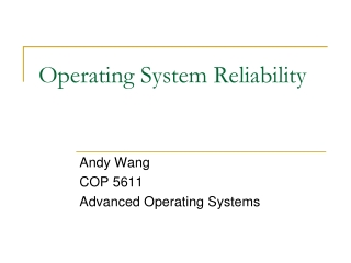 Operating System Reliability