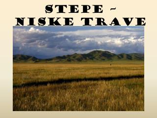 STEPE – niske trave