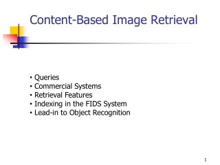 XML Retrieval: A content-oriented perspective