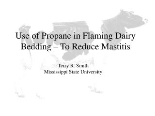 Use of Propane in Flaming Dairy Bedding – To Reduce Mastitis