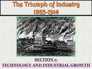 The Triumph of Industry 1865-1914