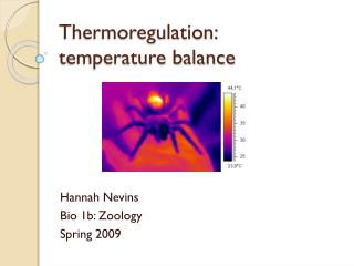 Thermoregulation:  temperature balance