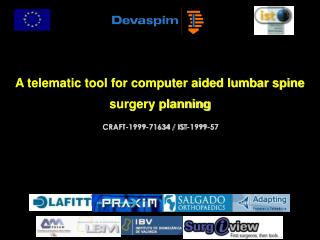 A telematic tool for computer aided lumbar spine surgery planning