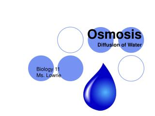 Osmosis Diffusion of Water