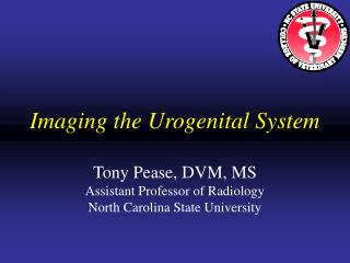 Imaging the Urogenital System