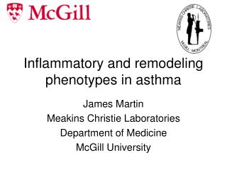 Inflammatory and remodeling phenotypes in asthma