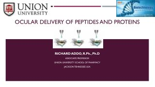 Ocular Delivery of peptides and proteins