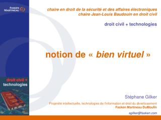 notion de «  bien virtuel  »