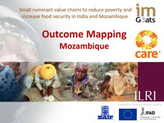 Small ruminant value chains to reduce poverty and increase food security in India and Mozambique