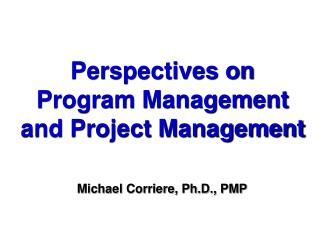 Perspectives on Program Management and Project Management