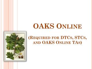 OAKS Online (Required for DTCs, STCs, and OAKS Online TAs)