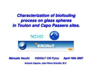 Characterization of biofouling process on glass spheres  in Toulon and Capo Passero sites.
