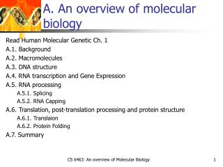 A. An overview of molecular biology