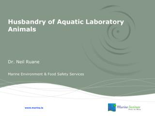 Husbandry of Aquatic Laboratory Animals