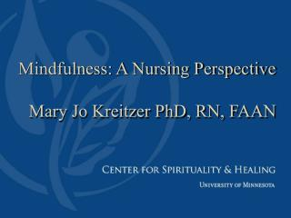 Mindfulness: A Nursing Perspective Mary Jo Kreitzer PhD, RN, FAAN