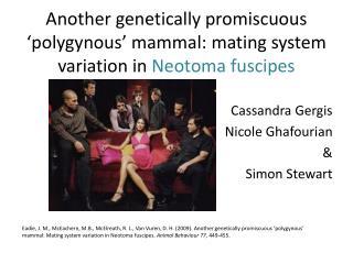 Cassandra Gergis Nicole Ghafourian & Simon Stewart