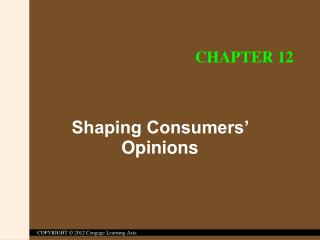 Shaping Consumers' Opinions